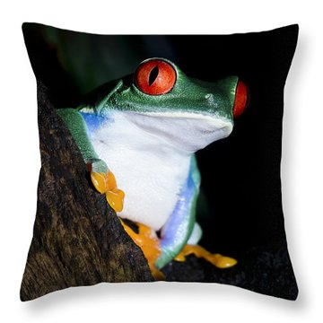 Playing It Cool Throw Pillow