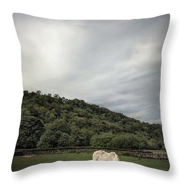 Pleasant Valley Sunday Throw Pillow