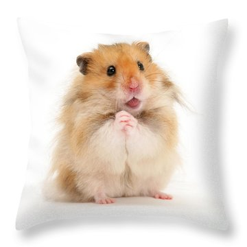 Please Be Mine Throw Pillow