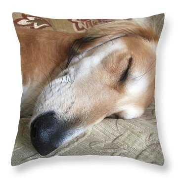 Please Be Quiet. Saluki Throw Pillow