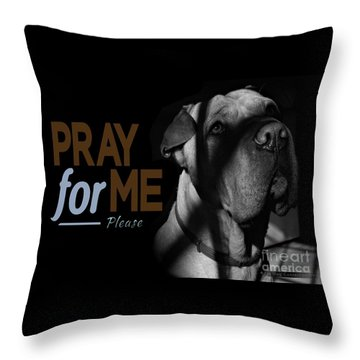 Please Pray For Me Throw Pillow