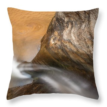 Throw Pillow featuring the photograph Pleasurable Contemplation by Dustin LeFevre
