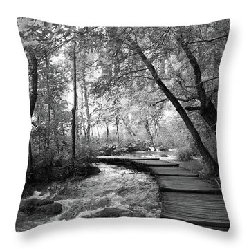 Plitvice In Black And White Throw Pillow