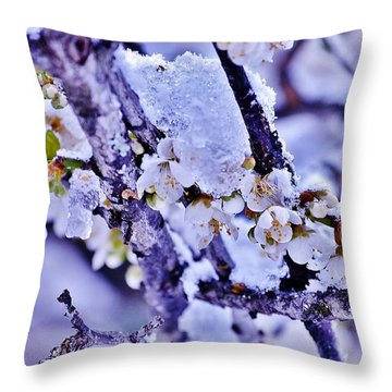 Plum Blossoms In Snow Throw Pillow
