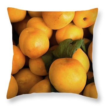Throw Pillow featuring the photograph Plum Crazy by Sandy Molinaro