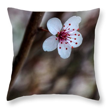 Plum Flower Throw Pillow
