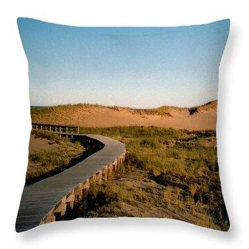 Plum Island Dunes Throw Pillow