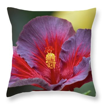 Plum Wonderful Throw Pillow