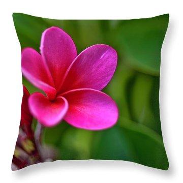 Plumeria - Royal Hawaiian Throw Pillow