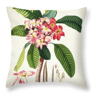 Plumeria Botanical Print Throw Pillow