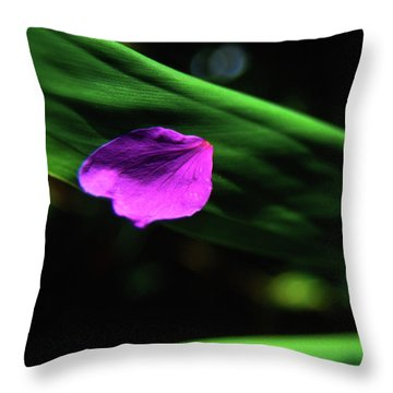 Plumeria Flower Petal On Plumeria Leaf- Kauai- Hawaii Throw Pillow