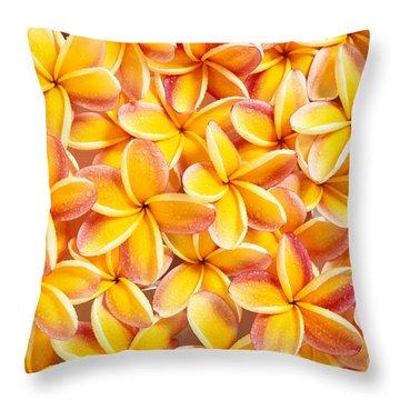 Plumeria Flowers Throw Pillow by Kyle Rothenborg - Printscapes