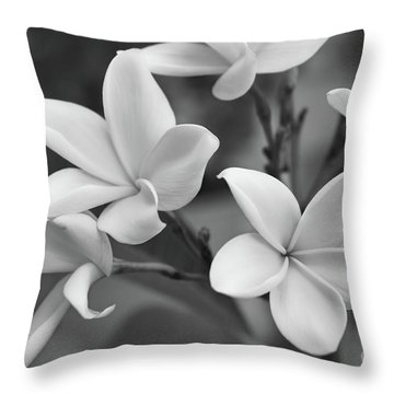 Plumeria Flowers Throw Pillow by Olga Hamilton