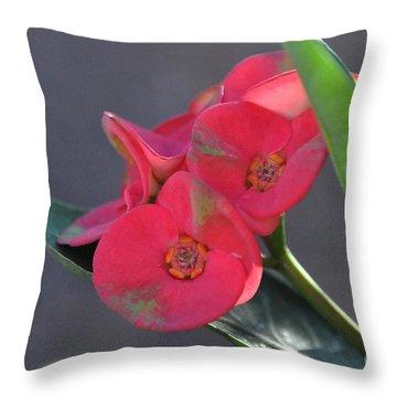 Throw Pillow featuring the photograph Plumeria by John Black