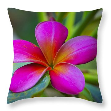 Plumeria On Leaf Throw Pillow