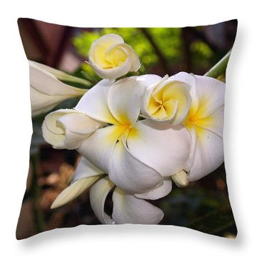 Plumeria Portrait Throw Pillow