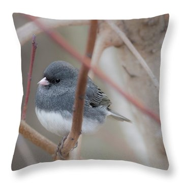 Plumpy Throw Pillow