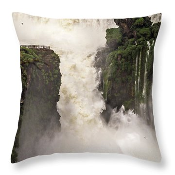 Throw Pillow featuring the photograph Plunge by Alex Lapidus