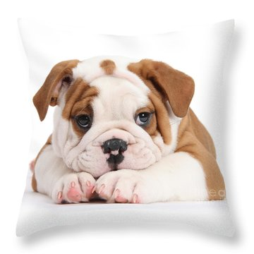 Po-faced Bulldog Throw Pillow