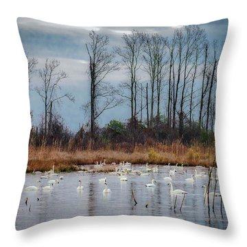 Pocosin Lakes Nwr Throw Pillow
