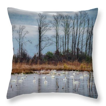 Pocosin Lakes Nwr Throw Pillow