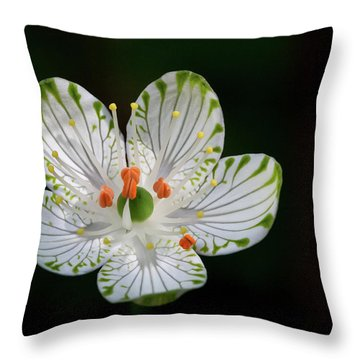 Pocosin Manifest #2 Throw Pillow