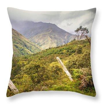Podocarpus National Park Throw Pillow