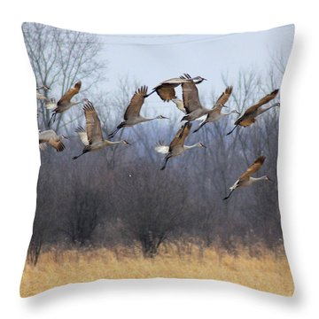 Throw Pillow featuring the photograph Poetry In Motion by Viviana  Nadowski