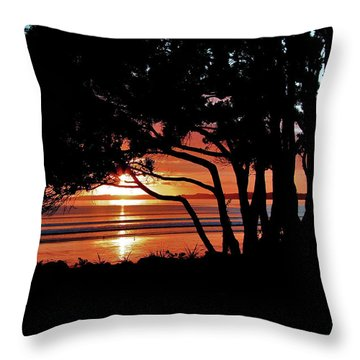 Pohutakawa Sunrise Throw Pillow by Karen Lewis