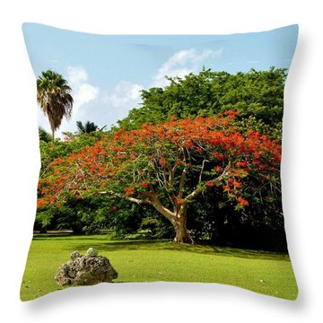 Poinciana Throw Pillow by Amar Sheow