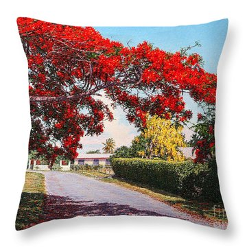 Poinciana Shadows Throw Pillow
