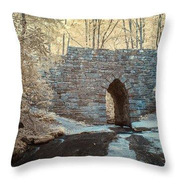 Throw Pillow featuring the photograph Poinsett Bridge-ir-10 by Joye Ardyn Durham