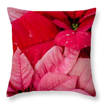 Poinsettias For The Holidays Throw Pillow