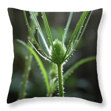 Points Of Light -  Throw Pillow
