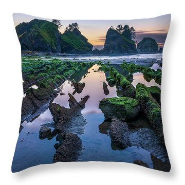 Point Of The Arches Throw Pillow