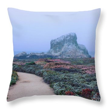 Point Piedras Blancas Throw Pillow