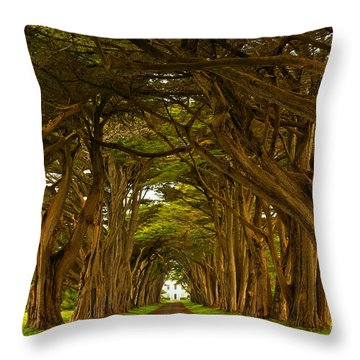 Point Reyes Cypress Tunnel Throw Pillow