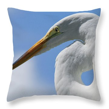 Pointed Curves Throw Pillow by Christopher Holmes