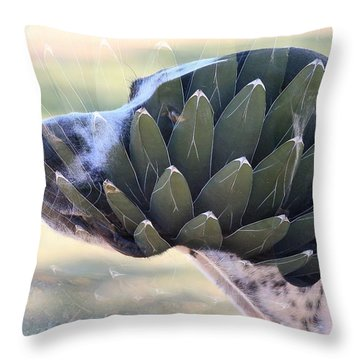 Pointing Skywards 1 Throw Pillow