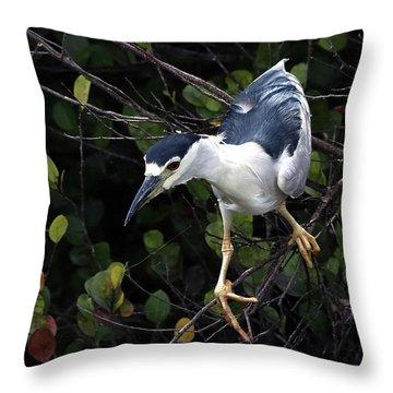 Poise Throw Pillow