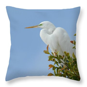 Throw Pillow featuring the photograph Poised 2 by Fraida Gutovich