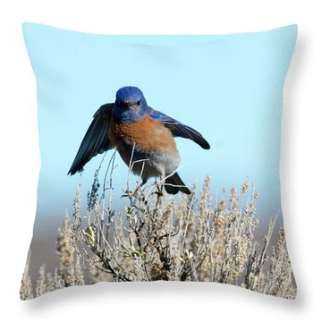 Poised To Fly Throw Pillow