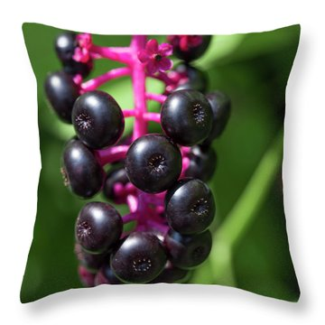 Pokeweed Cluster Throw Pillow