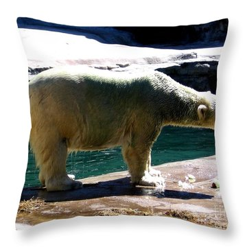 Polar Bear 3 Throw Pillow