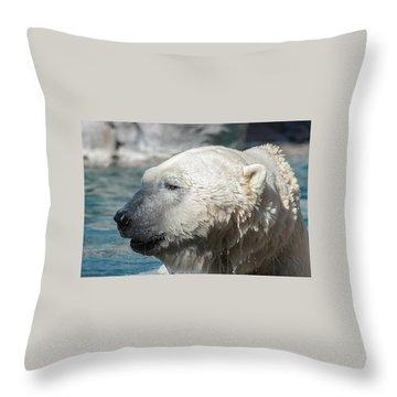 Polar Bear Club Throw Pillow