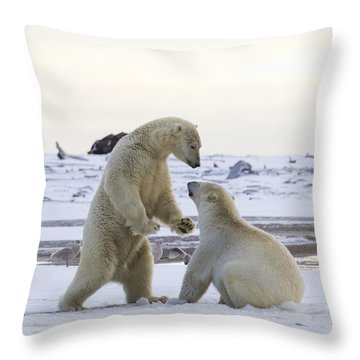 Polar Bear Play-fighting Throw Pillow