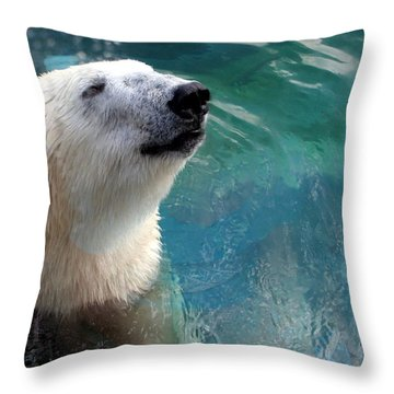 Polar Bear Up Close Throw Pillow by Laurel Talabere