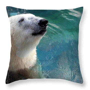 Polar Bear Up Close Throw Pillow