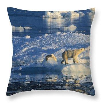 Polar Bear Ursus Maritimus Adult Throw Pillow by Rinie Van Meurs