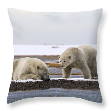 Polar Bear Zzzzzzz's Throw Pillow
